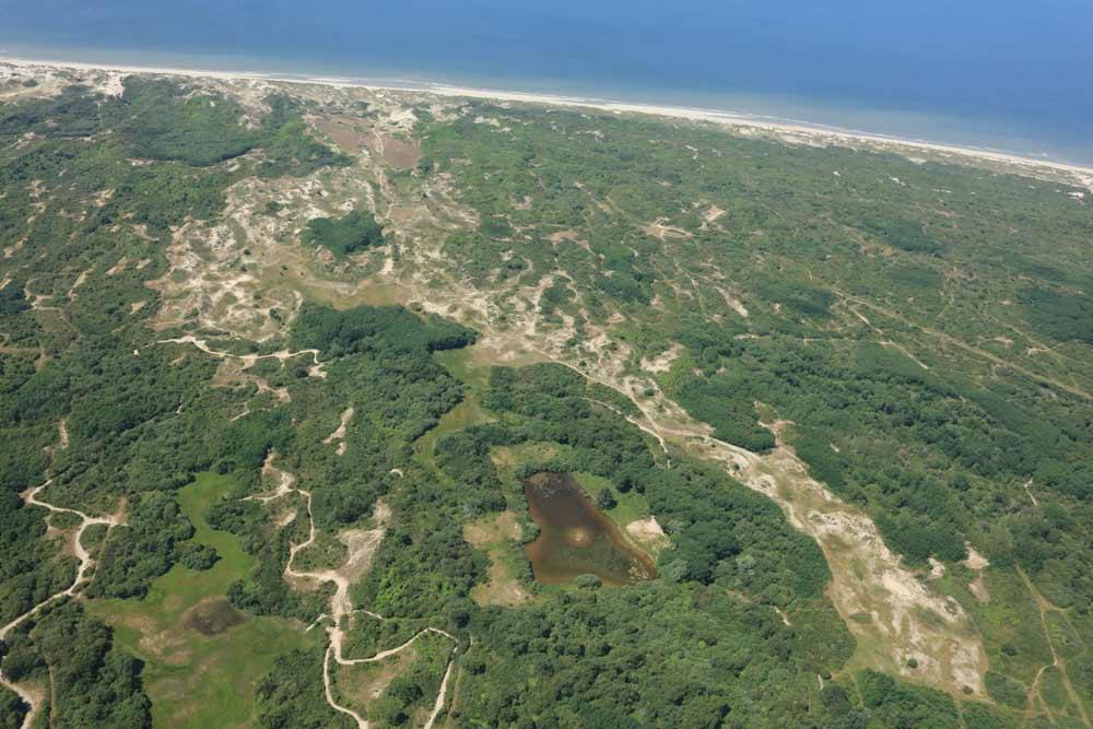 Massif dunaire