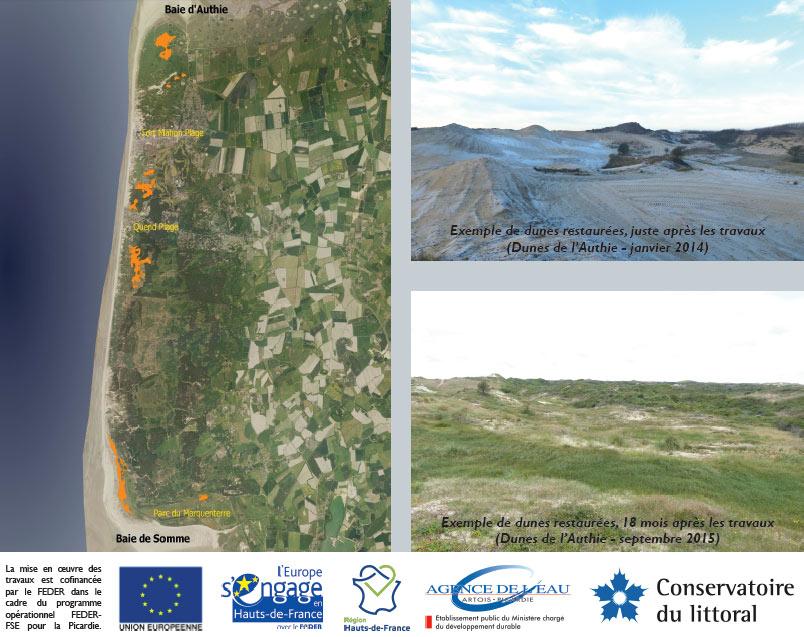 Restauration massif dunaire