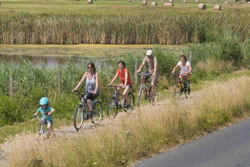 Sillonner le Grand Site à vélo