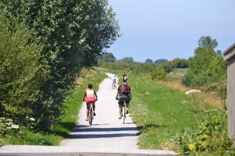 Plan Vélo : enquête et réunions publiques