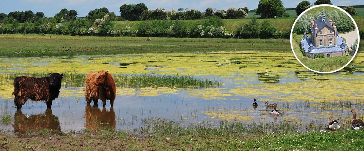 Journée mondiale des zones humides à Blanquetaque