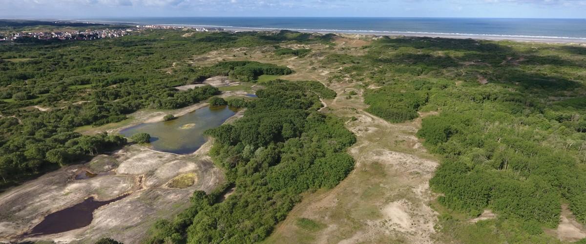 Reprise des travaux de restauration des dunes