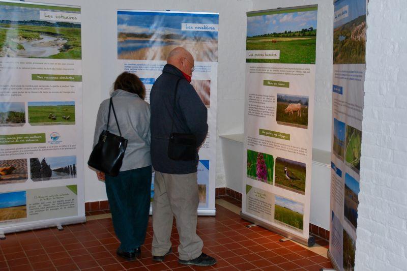 Exposition présentant le site Ramsar et diversité des zones humides