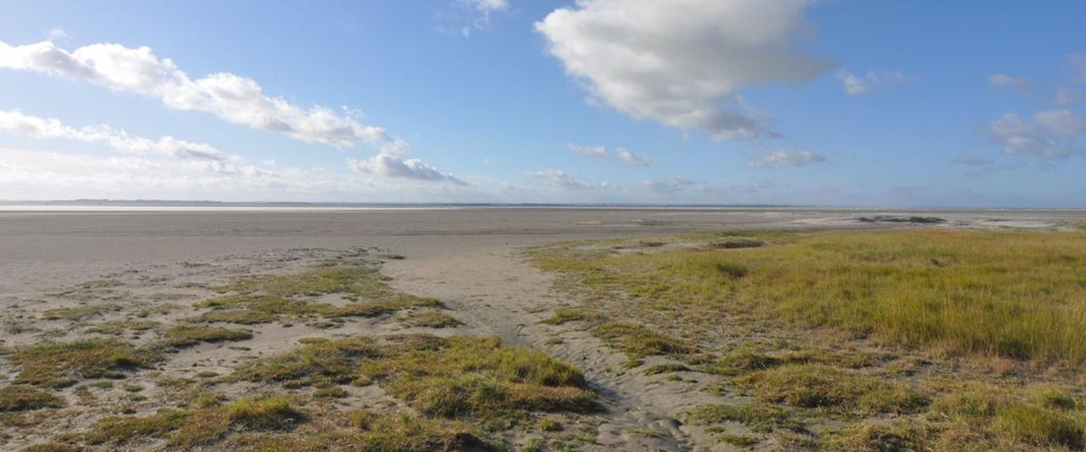 Réserve Naturelle Nationale de la Baie de Somme