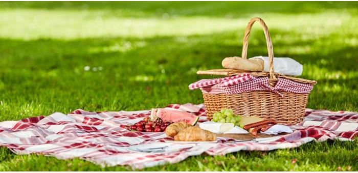 Picnic day at Jardins de Valloires