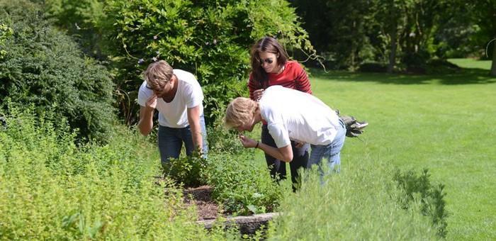 Jardins de valloires destination baie de somme for Le jardin des sens