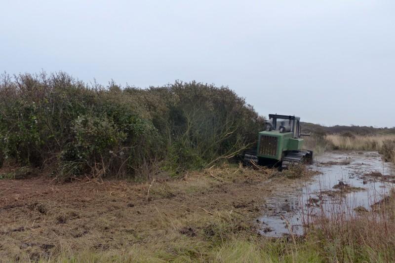 Contrat Natura 2000 - Baie authie - broyage des argousiers
