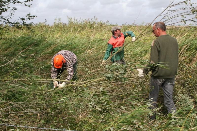 Les agents du  Syndicat Mixte entretiennent près de 4800 ha d'espaces naturels sensibles